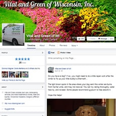 Facebook design for Vital and Green of WI